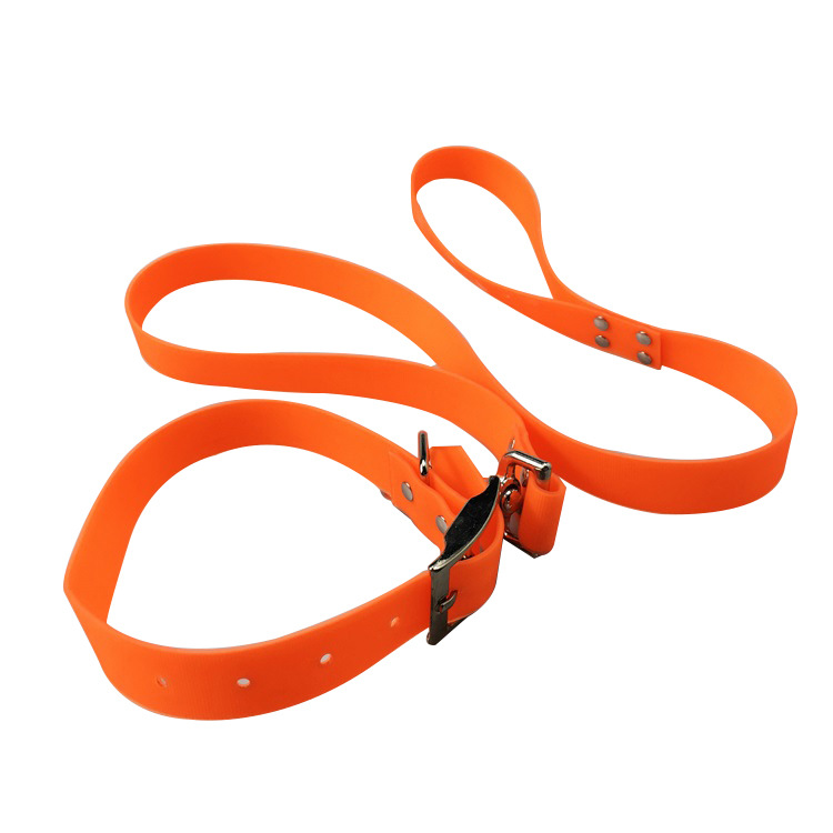 Small And Medium Retractable Pet Rope Candy-Colored Waterproof PVC Packing Ribbon Dog Traction Belt