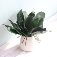 Single  Phalaenopsis Leaf Artificial Flower (Note Order Remarks Independent Package) Gift Wedding Party and Home Decor