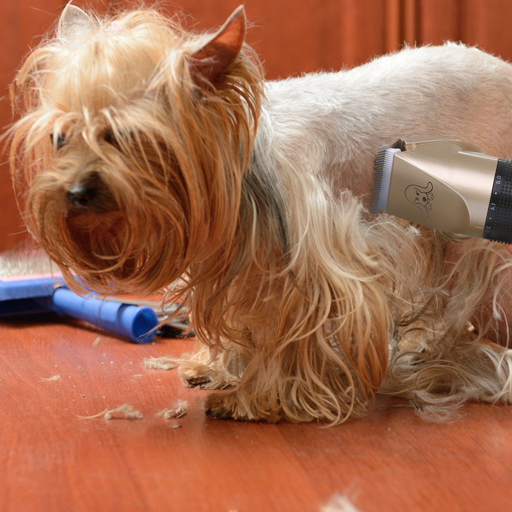 Powerful Cordless Rechargeable Low Noise Pet Grooming Trimmer 13