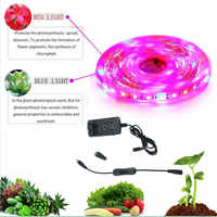led grow strip light 5M Full Spectrum Flower Plant Growing lights phyto Greenhouse Hydroponic Growth lamp Waterproof indoor for