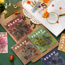 Journamm 40Pcs/bag Plants Series Botany Deco Diary Stickers Scrapbooking Pad Planner Decorative Stationery Stickers Accessories