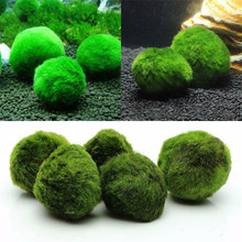 Practical Decorations Round Fish Useful Aquarium Eco-friendly Home Live Plants Moss Balls Curbs Algae Growth Healthy Environment(China)