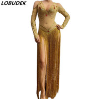 Belly Dance Costume Women Gold Long Tassel V neck Transparent Dress Stage Performance Competition Stage Wear Party Show Clothing