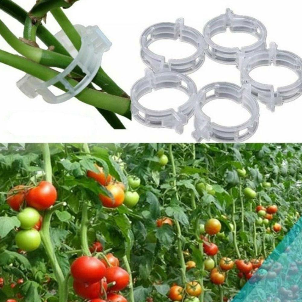 10pcs Garden Vegetables Tomato Vine Stalks Grow Upright Support Plant Fixed Clip Hanger Plant Support Clips Agriculture Tools