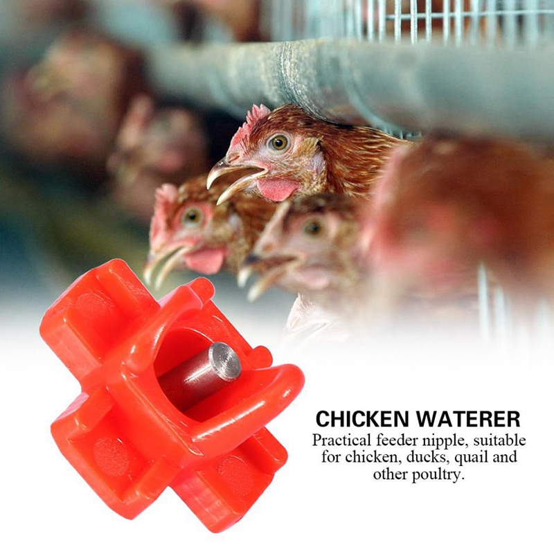 50Pcs/Set Nipple Waterers Rodents Goose Duck Quail Bird Chicken Feeders Nipples Automatic Poultry Farm Waterer Feeding System