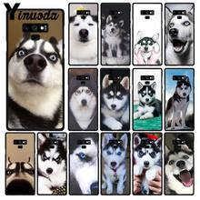 Yinuo zwierząt Husky cute Puppy Dog etui na telefon do Samsung Galaxy A50 Note7 5 9 8 Note10 Pro J5 J6 prime J610 J6Plus J7 DUO(China)