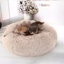Cat Bed Bed-House Soft Pet Sleeping Dog Round Plush For Small Dogs Cats Nest Winter Warm Puppy Mat