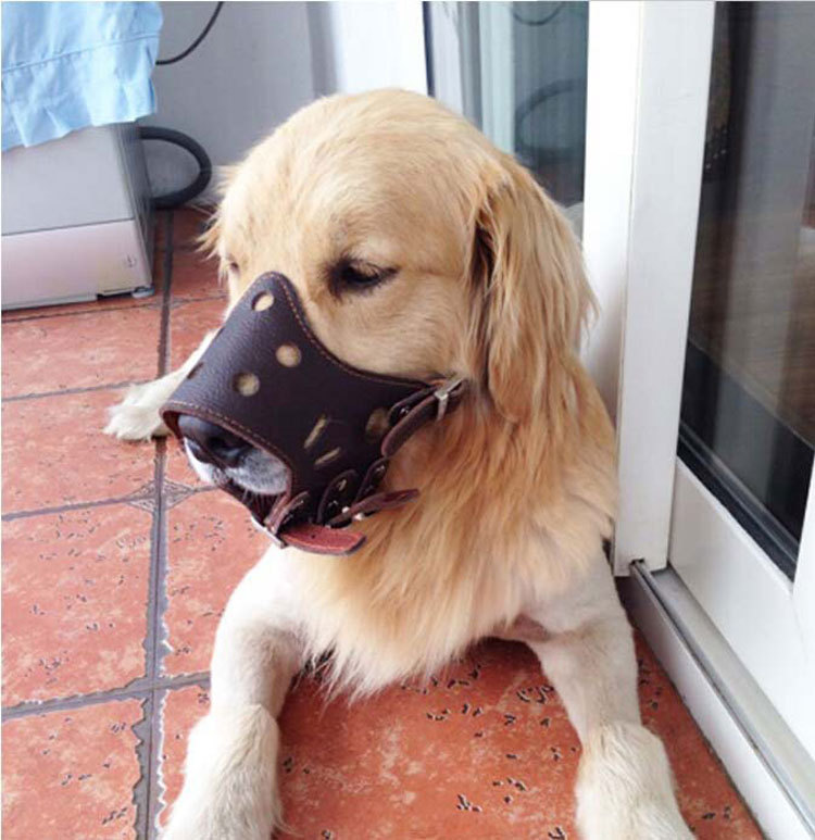Leather Dog Face Mask Anti-Eat Bite Drink Called Jian Shi Golden Retriever Breathable Muzzle-Civil Air Defense Comfortable Dog F