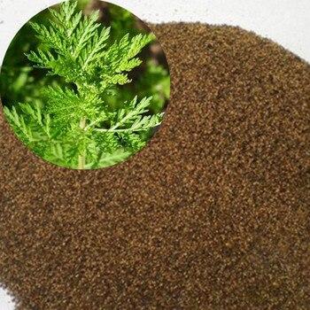 1000Pcs семена растений Artemisia Annua Bonsai Plants DIY Garden Home Decoration Herbal Sementes сад и огород семена для посадки