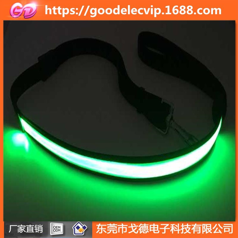 Pet Traction Rope Night Reflective USB Charging Sling LED Shining Anti-Lost Car Accident Dog Rope