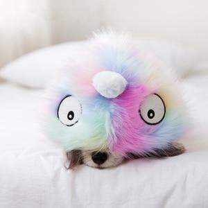 Image 5 - Cute Cat Dog Clothes Dog Jacket Shirt Pet Clothing Rainbow Fur Dog Coat Puppy Pet Clothes France Bulldog Yorkshire ropa perro