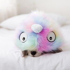 Image 5 - Nette Katze Hund Kleidung Hund Jacke Hemd Haustier Kleidung Regenbogen Fell Hund Mantel Welpen Haustier Kleidung Frankreich Bulldog Yorkshire ropa perro