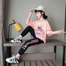 Розовый синий комплект одежды с рисунком для девочек весна осень