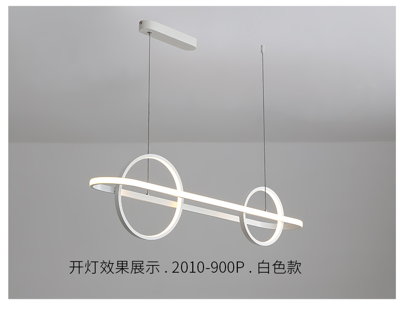 2010-900P_13