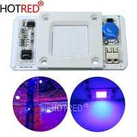 50W Led COB UV lámpara Chip 110 V/220 V 395nm 400nm DOB AC ultravioleta cura Metal Detector cuarzo luz negra desinfección germicida