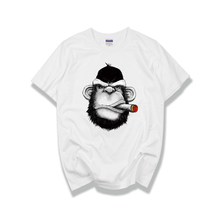 Monyet Lucu Lucu T
