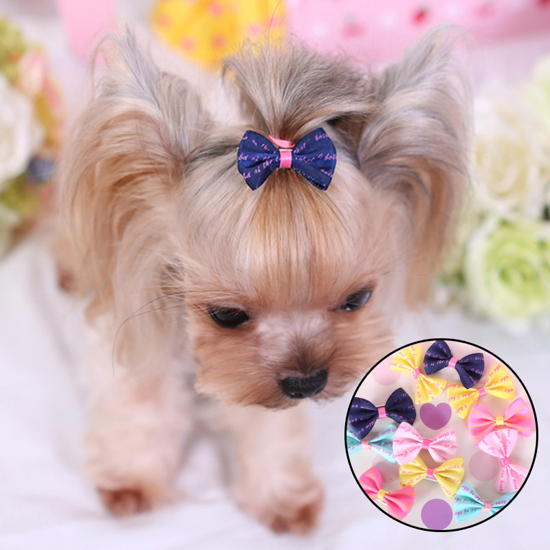 5Pcs Lovely Pet Dog Hair Clips Dogs Accessories Small Puppy Cat Hair Clip Pet Hair Accessories Dog Hair Grooming Cat Accessoires