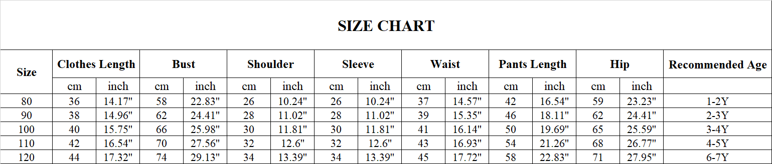 HIPAC 2PCS Boys Outfits Baby Boy Clothes For Kids Clothing Toddler Casual Pants Sports Suit Children Kid Suits Sport Hoodies