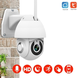 Tuya Ball Machine Network Wireless Graffiti Camera Graffiti Smart Home Wifi Outdoor Ball Machine EU Plug