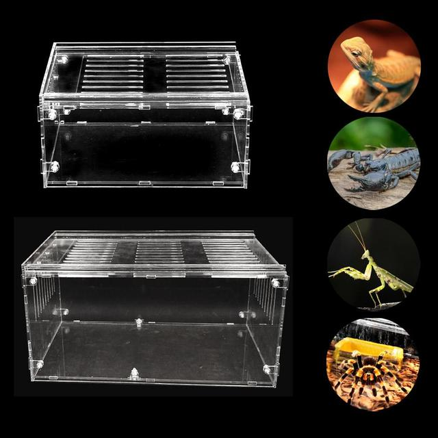 Reptile Breeding Box For Spiders - Lizards - Frogs - Crickets - Turtles 2
