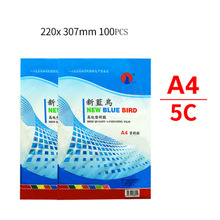 File-Card-Picture Information-Film A4 Pet-Photo 50-Mic 100-Sheets/Pack