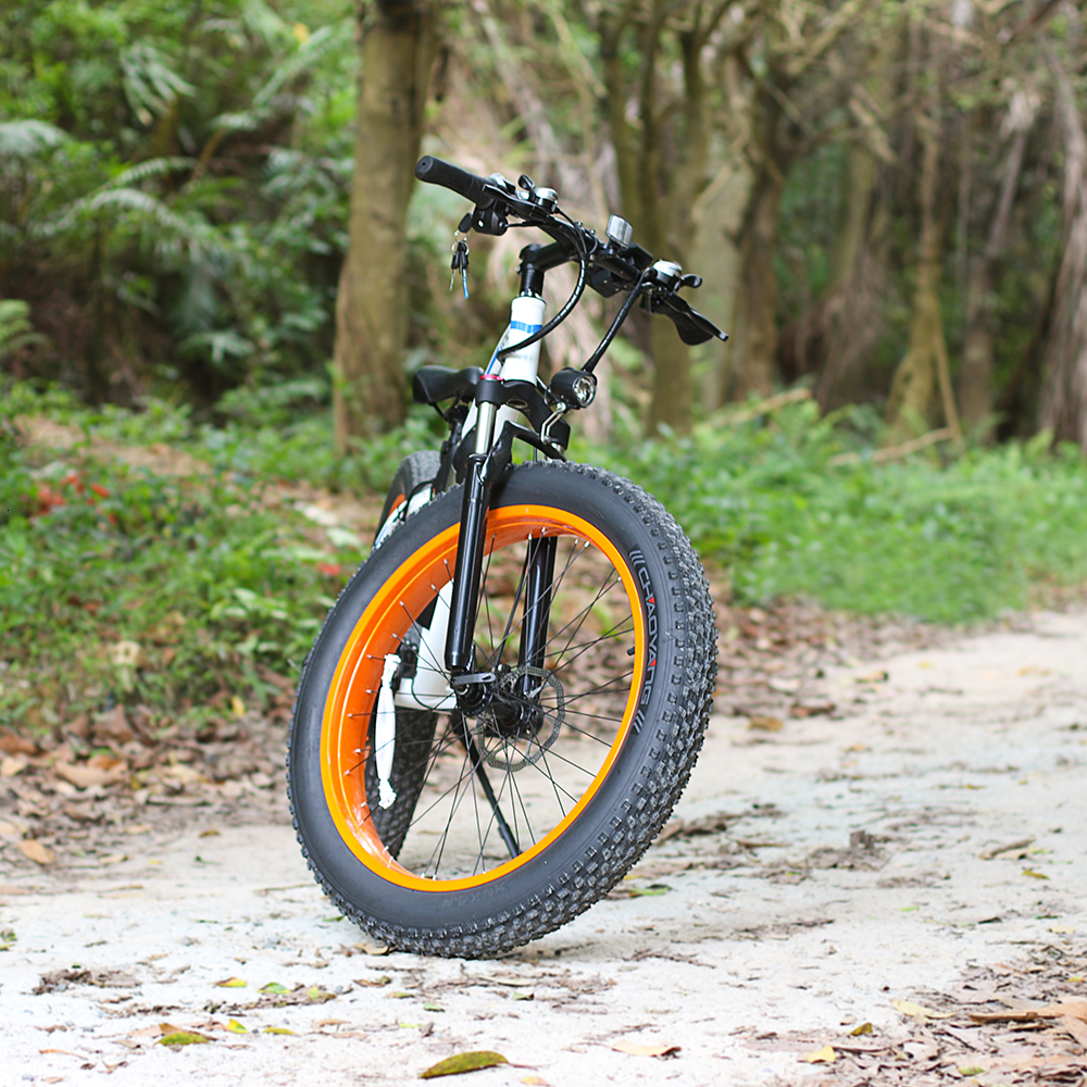 Popular E6-5 EcoRider E6-5 Electric Bike 350w Electric Bicycle with Lithium Battery 5