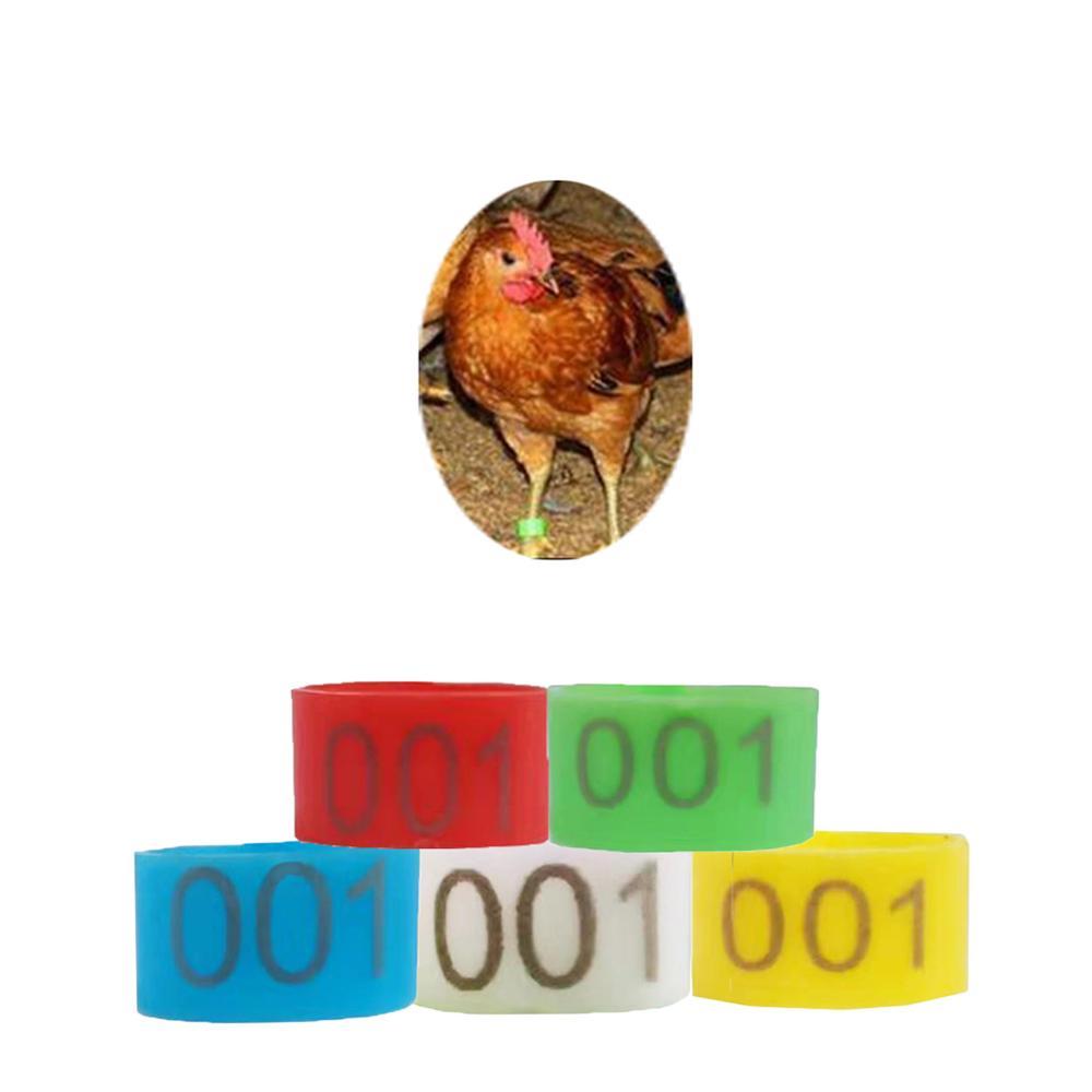 Verde 6 Colores 100 Unids//Bolsa 8MM 001-100 Numerados Pl/ástico P/ájaro P/ájaro Bandas Anillos Hen Pigeon Pierna Aves de Corral Paloma P/ájaro P/ájaros Loro Clip Anillos Banda