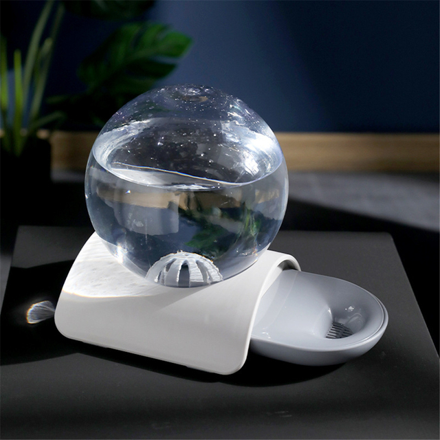 Pet Automatic Water Dispenser with Large Drinking Bow  My Pet World Store
