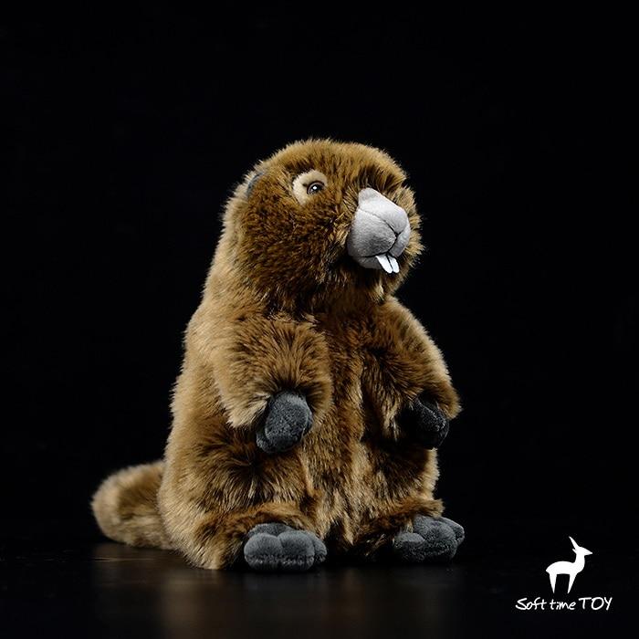 Soft Squirrel Plush Toy Stuffed Soft Animal Cute Toys For Boys Plushie Stuffed Animals Soft otki Pluszowe Plush Toys JJ60MR