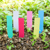 Plant Labels Plastic Colorful Waterproof Plant Tags Nursery Garden Labels Pot Marker Garden Stake Tags Vegetable Seedling Tray
