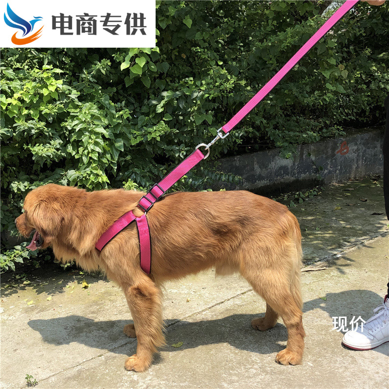Dog Small Lanyard Dog Large Teddy Vest Style Traction Chain Medium-sized Dog Unscalable Chest Universal Golden Retriever Walking
