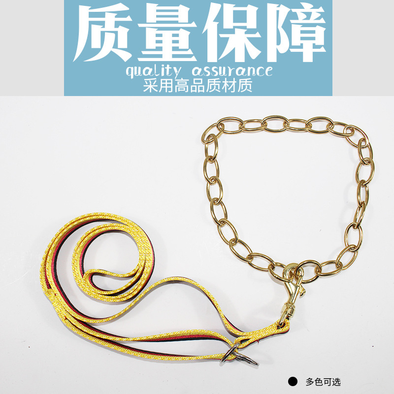 Online Celebrity Dog Traction Belt Hand Holding Rope Germany Three-Color Traction Belt Fine Copper Traction Nylon Dog Chain Fine