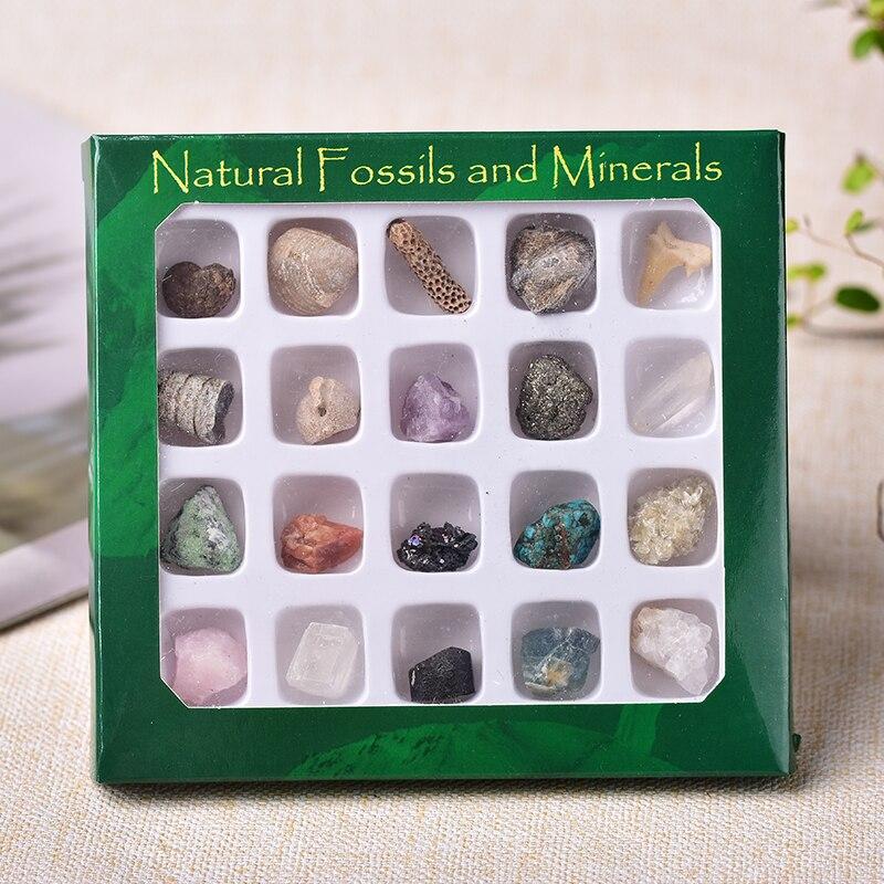 20 шт. натуральный минеральный Минеральный Образец необычные сырые кристаллы сувенир мини минеральный камень коллекция орнамент подарки дл...