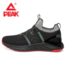 PEAK TAICHI Men Adaptive Running Shoes Lightweight Breathable Absorbing Sneakers Non-slip Wear Comfort Sports