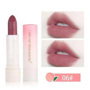 6 Colors TEAYASON Makeup Retro Red Peach Lipstick Matte Velvet Lip Stick Waterproof Long Lasting Summer Cosmetics TSLM1