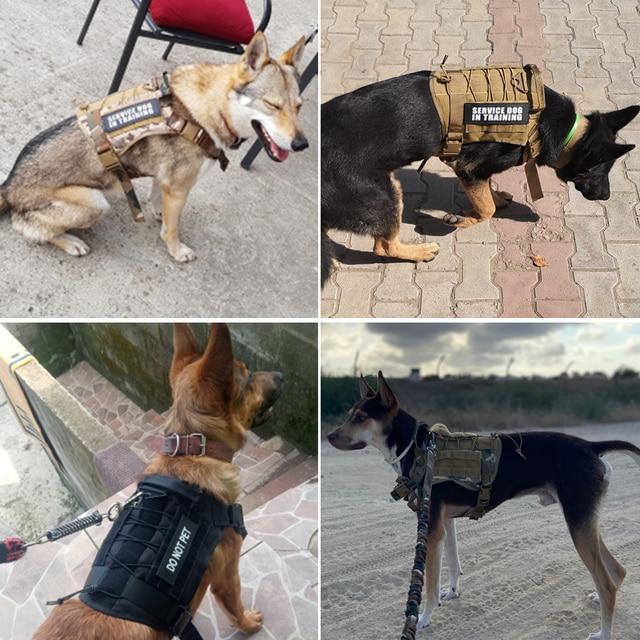 Service Canine Vest & Harness  3