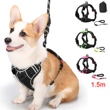 Reflective Cat Dog Harness Vest Pet Leash For Walking Personalized Adjustable Puppy Small Large and Set