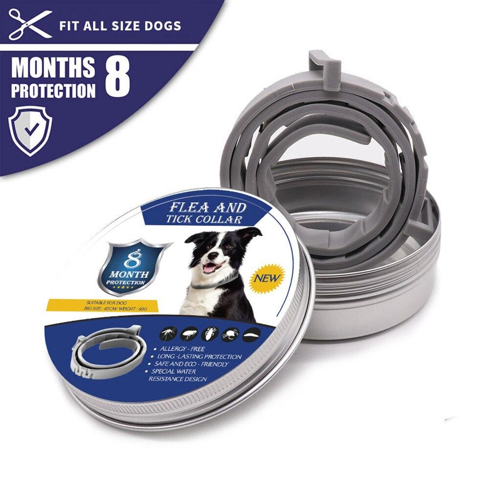 Vermifuge chien chat collier jusquà 8 mois anti-puces anti-moustiques nd insecte répulsif réglable collier pour chien de compagnie Chihuahua Bulldog
