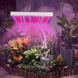 Image 2 - LED Wachsen Licht Phyto Lampe 45W Lampe Für Anlage AC85 265V Phytolamp Für Pflanzen Volle Spektrum Für Pflanzen Blume Sämling anbau