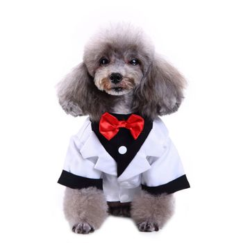 Pet Soft Bow Tie Coat Suit For Small Medium Dogs Puppy Party Costume Cat Clothes Winter New Dog Boys Dress Jacket image