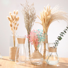 Creative Retro Idyllic Wind Transparent Slim Glass Vase Hydroponic Green Lola  Dried Flowers Room Decoration
