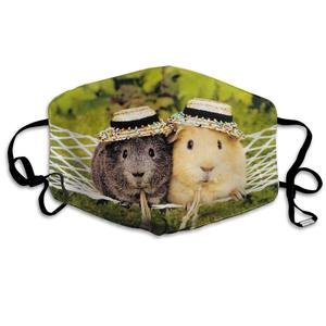 Маска для рта для ежедневного одевания, милый хомяк, морская свинка, защита от пыли, Моющиеся Многоразовые праздничные полумаски для лица