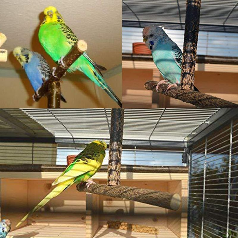 Bird Parrot Cage Toys Training T Perch Grinding Chewing Parakeet Wood Stand P0RE