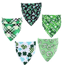 St. Patrick's day pet green shamrock theme travel party decorations holiday