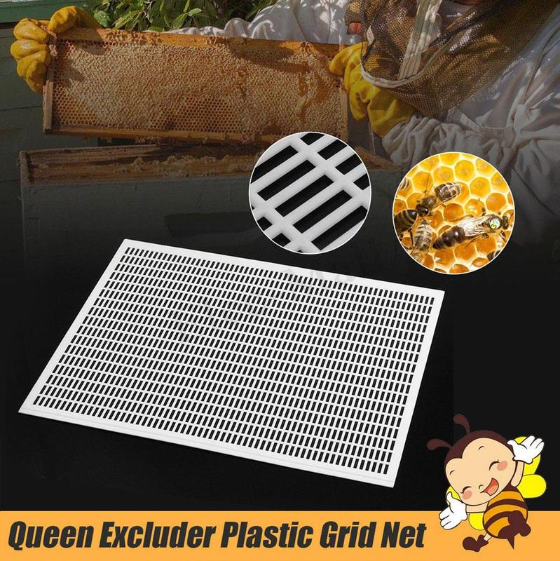 For 10 Frame Beekeeping Beekeeper Bee Queen Excluder Trapping Grid Net Tool Kit Plastic Separated King Board Royal Board