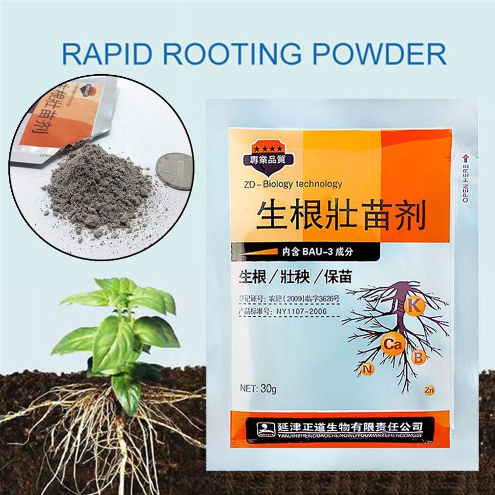 Plantes de jardin en poudre 30g | Poudre d'enracage rapide, aide à Germination rapide, Agent de semis médicinal pour couper, tremper les arbres à engrais