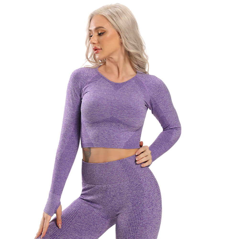 Seamless Yoga Top Long Sleeve Workout Tops for Women Fitness Crop Tops Short Active Sportswear Sexy Women's Shirt Gym Clothing