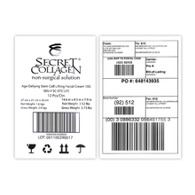 a4 Adhesive Express Labels Customizable Shipping Stickers Fast and Free Design