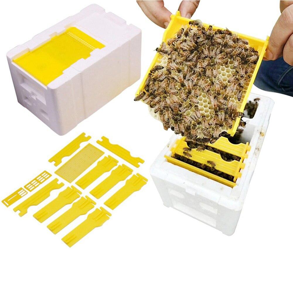Beekeeping Harvest Hive King Garden Pollination Box Case Beekeeper Practical
