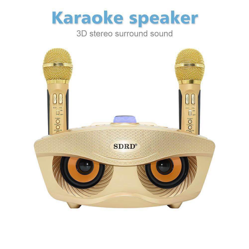 DSstyles SD306 Dual Wireless Microphone Bluetooth Speaker Mobile Wireless Karaoke Speaker Wireless Stereo Speaker Set